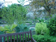 "Italy - Ravenna - Garden of ""forgotten herbs"" (aromatics and medics)"