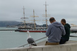 Two guys and a seagull in San Francisco