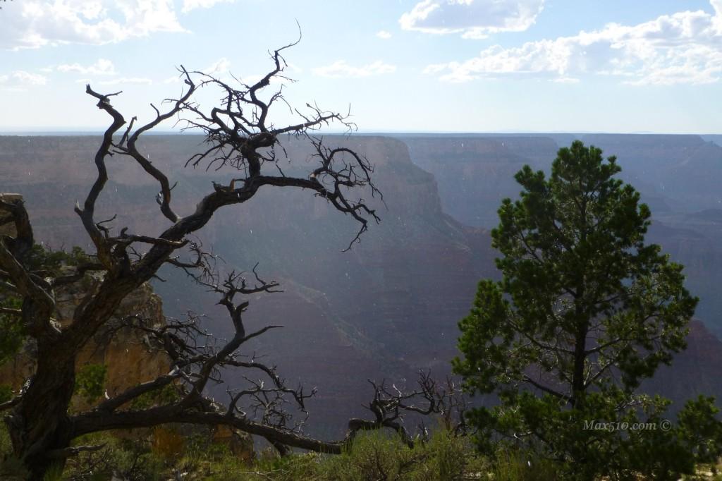 Grand Canyon - AZ - USA