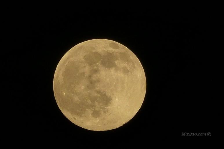 The moon dal... Mutarun