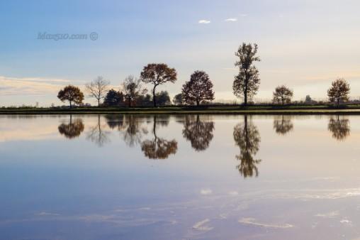 Novara - Esondazione Agogna